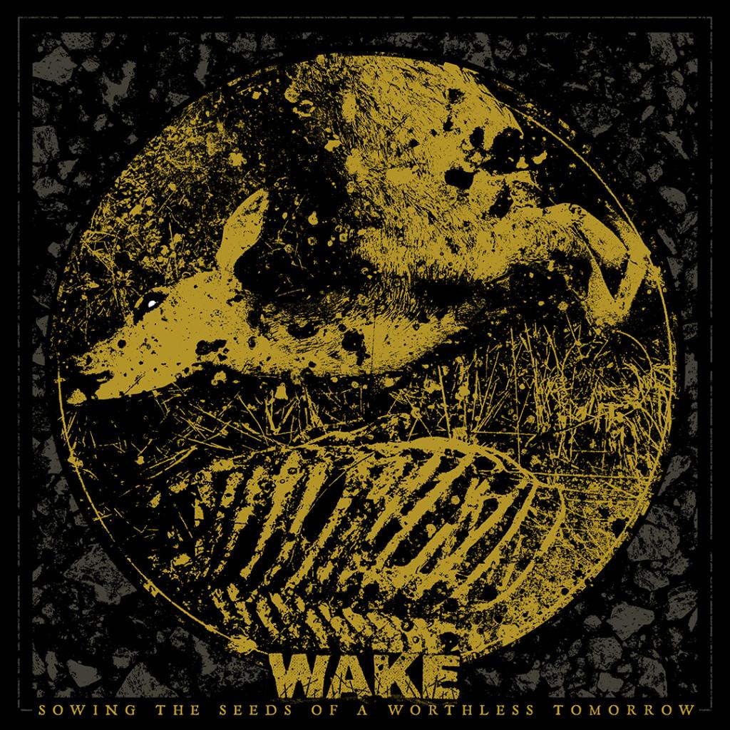 wake_stoawt_WEB