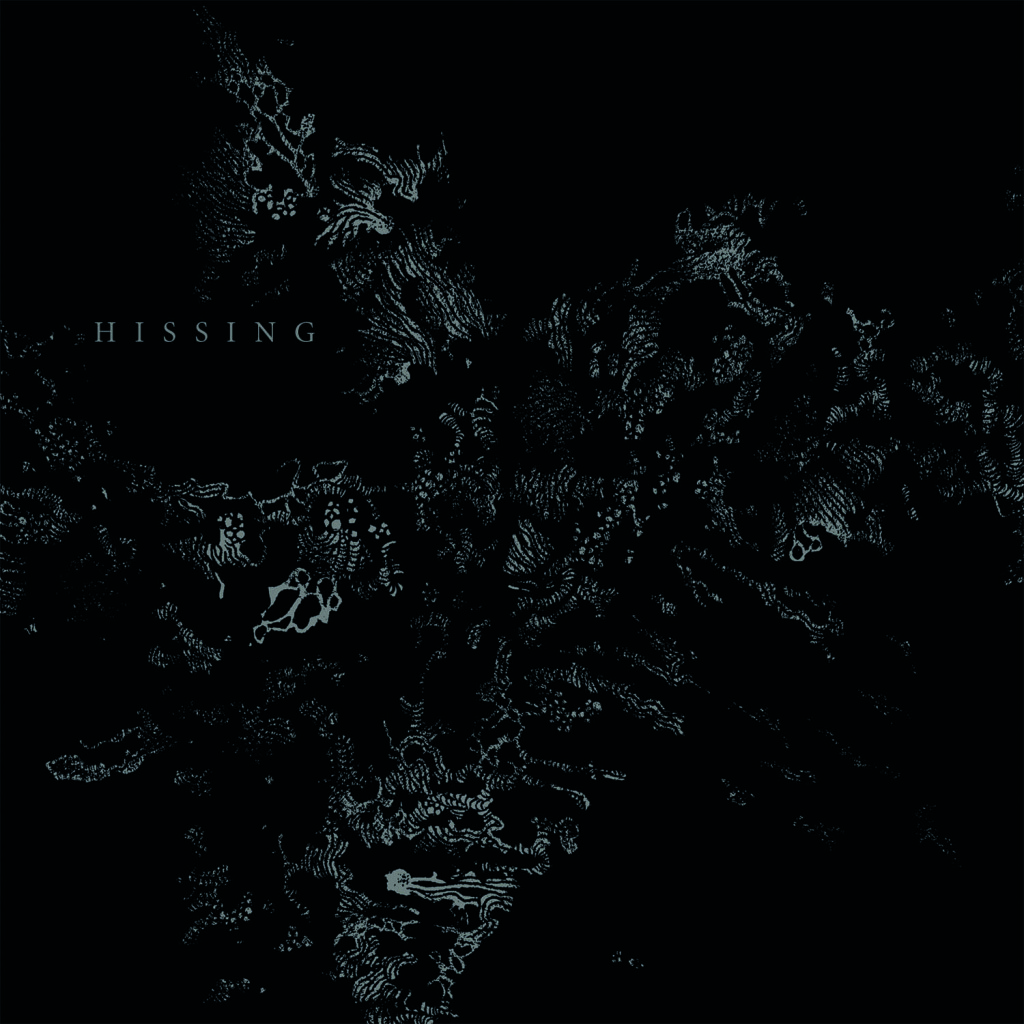 HISSING cover